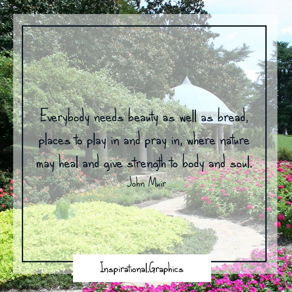 Gardening to Alleviate Stress