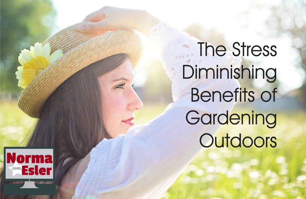 Stress Diminishing Benefits of Gardening Outdoors