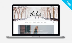 Ashe Pro Theme for WordPress