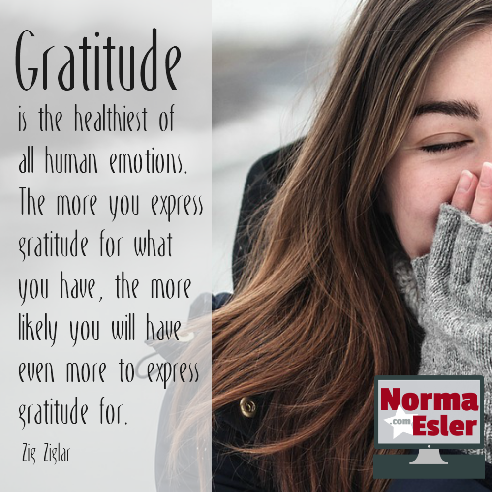 Recognize the Positives in Your Life and Be Grateful