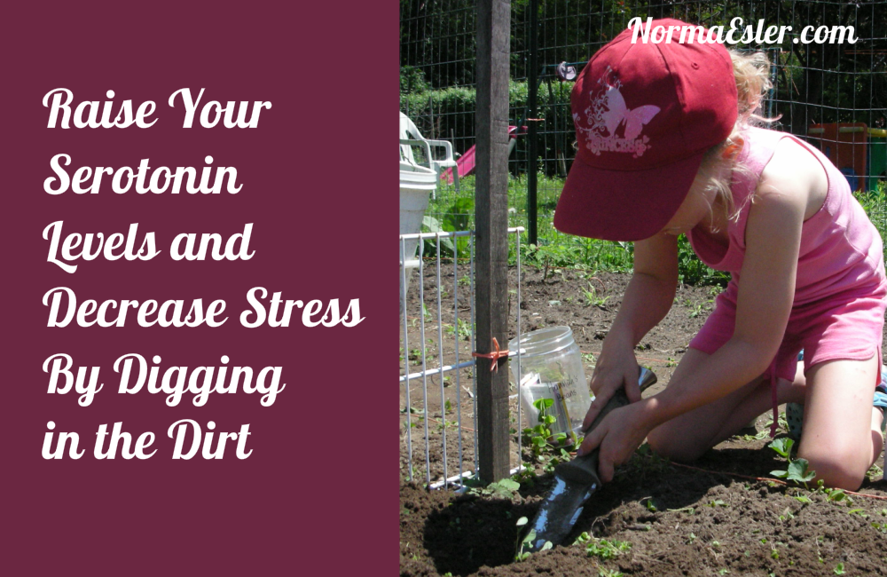 Raise Serotonin Levels Decrease Stress By Digging in the Dirt