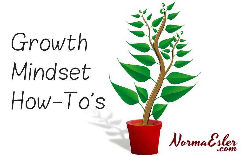 Growth Mindset How-Tos